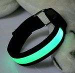 LED Arm Band